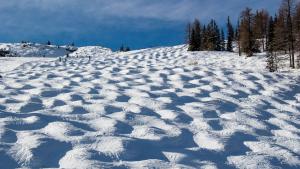 Mogul ski run