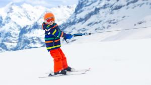 Best kids ski harness