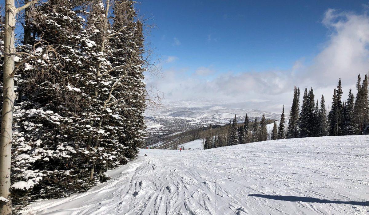 Ski run landscape
