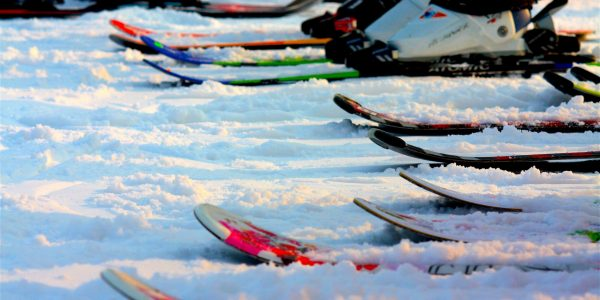 Line up of skis