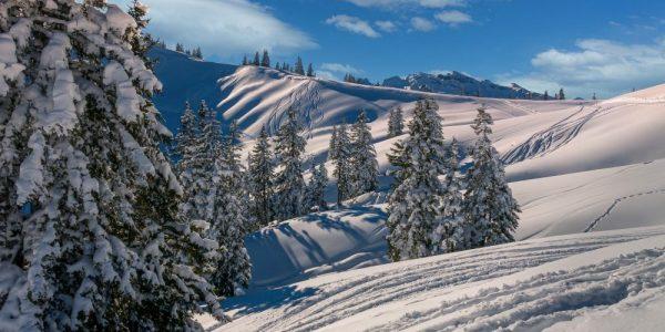 Powder day at ski resort